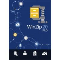 WINZIP 20 PRO ML DVD a